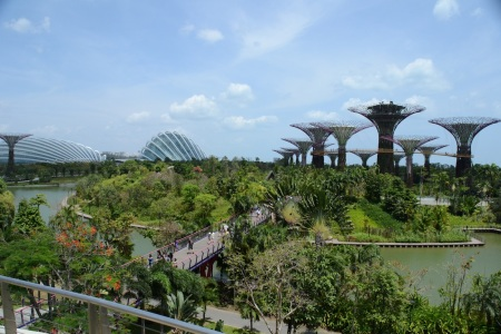 Very impressed by futuristic Singapore, so it was hard to pick a pic: these are the 'Gardens by the Bay'