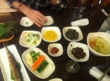 Just the starters... Including seasnails and silkworms!